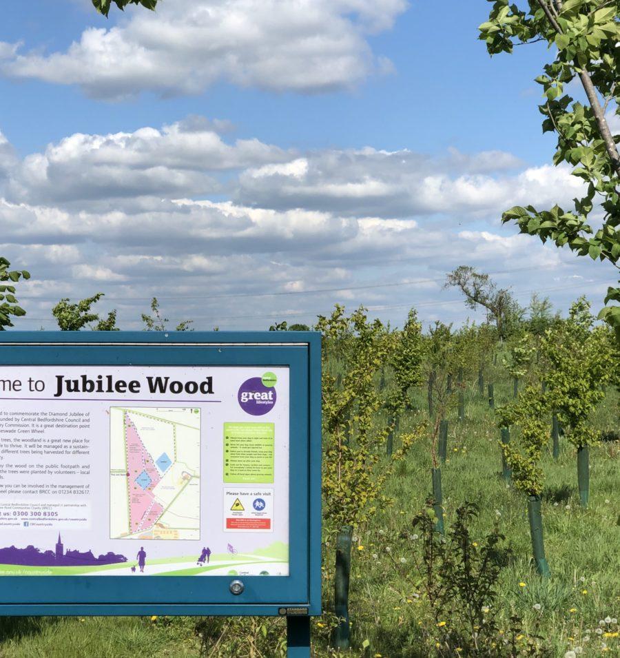 Jubilee Wood, Biggleswade